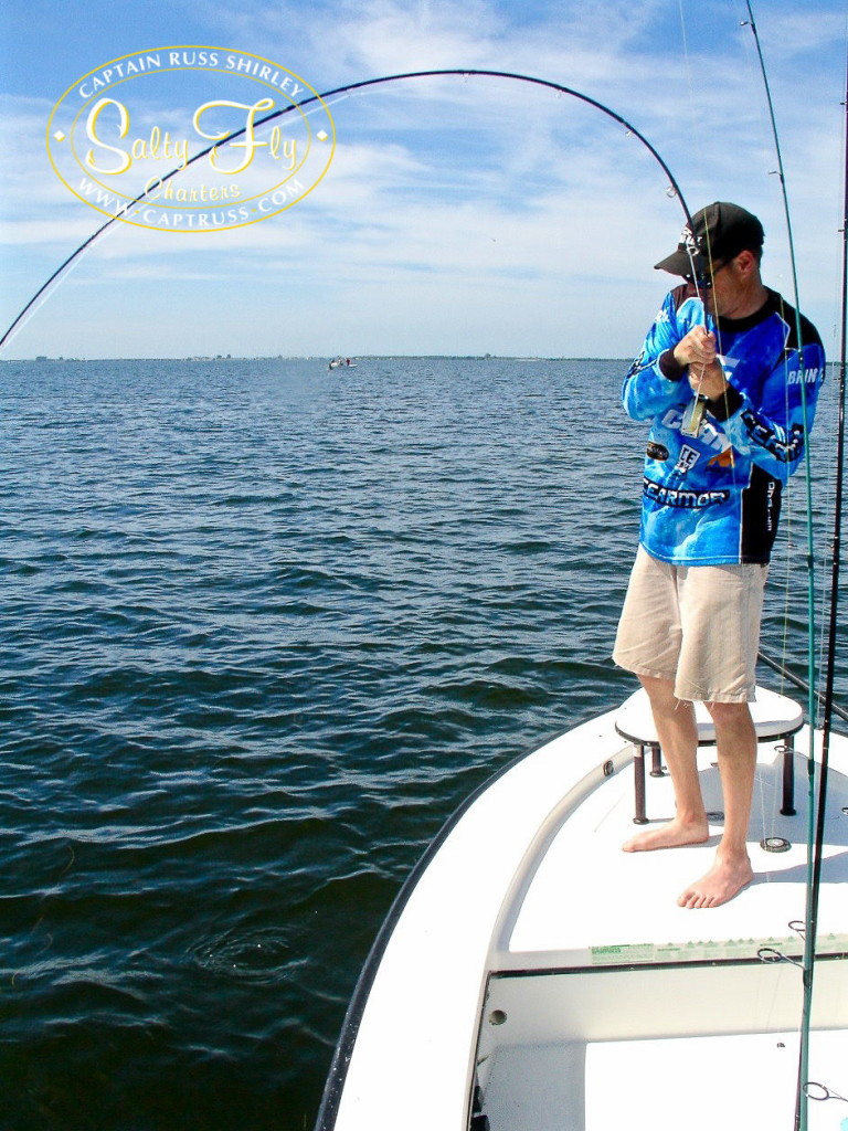 Captain Russ Shirley Tampa Bay Fly Fishing Report