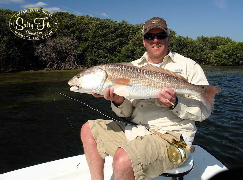 Fly fishing Tampa Bay redfish with Salty Fly Charters.