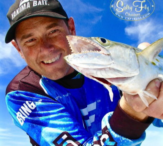 David Harrison with Tampa Bay Spanish Mackerel on fly.
