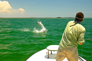 Dances-With-Tarpon