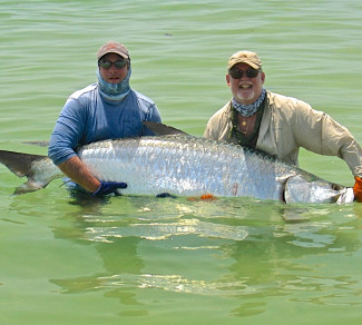First tarpon on fly in St. Petersburg with Capt. Russ Shirley.