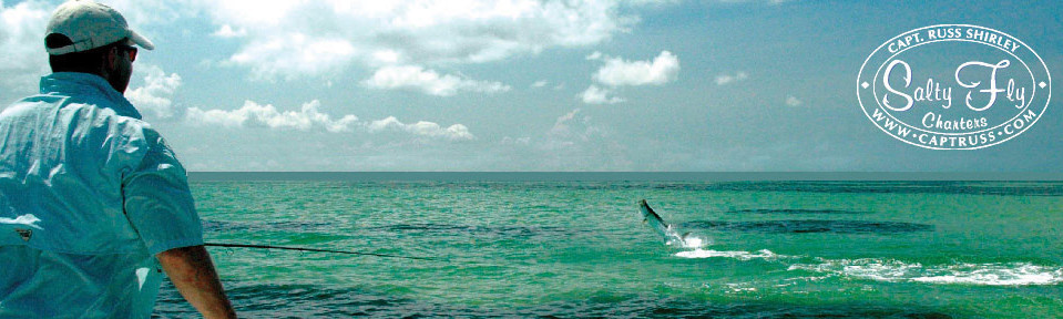 Tampa Bay Florida Fly Fishing Guide Specializes In Tarpon Fly Fishing Tampa, St. Petersburg, Clearwater.