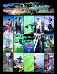 St. Petersburg Fly Fishing with Captain Russ Shirley • Tampa Fly Fishing Guide