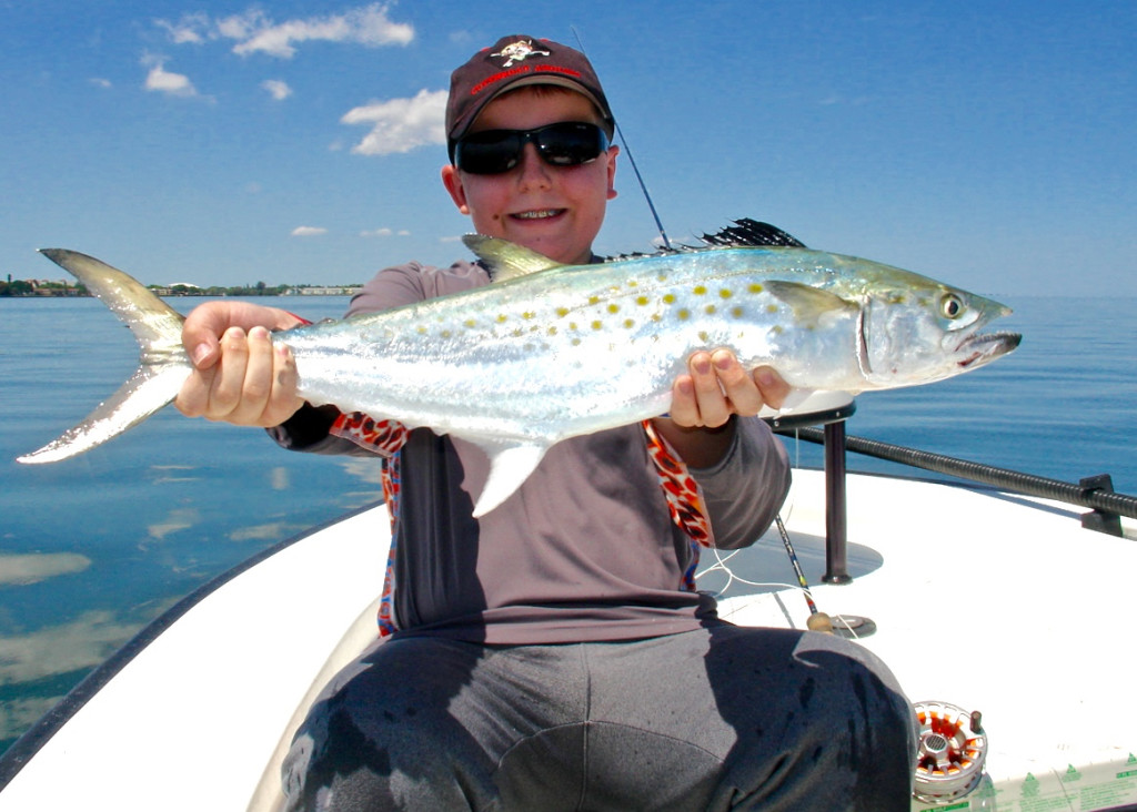 Tampa bay fly fishing and light tackle fishing 4 13 2016 for Tampa fly fishing