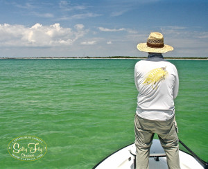 Tarpon Fly Fishing Tampa Bay