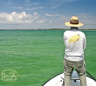 Tarpon Fly Fishing Tampa Bay