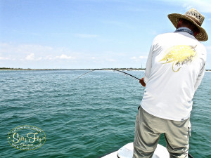 Tarpon in the channel with Richard Epling