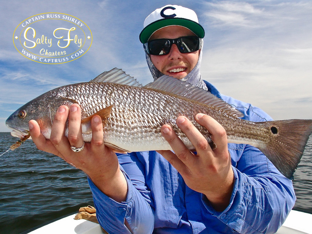 Tampa bay fly fishing report october november 2016 from for Tampa fly fishing